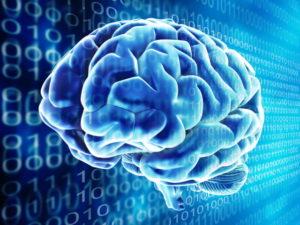 ibm-chip-human-brain-robot-overlord-640x0